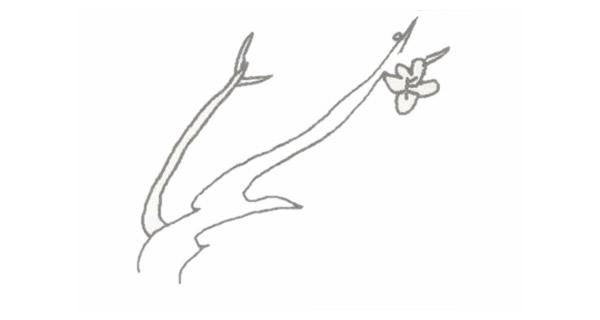 梅花简笔画的画法步骤图教程 中级简笔画教程-第3张