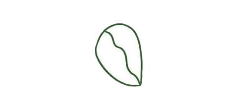 三叶草简笔画的画法步骤图解教程及图片大全 植物-第2张
