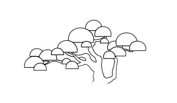 彩色松树儿童简笔画画法 中级简笔画教程-第5张
