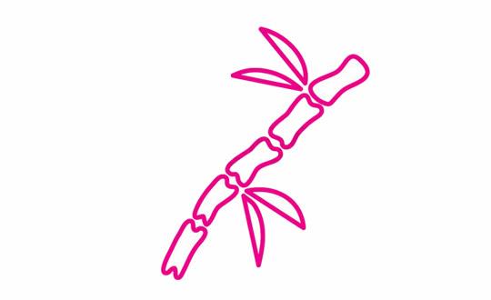 竹子简笔画的画法步骤 植物-第5张