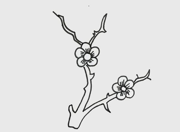 树枝上的梅花简笔画 初级简笔画教程-第3张