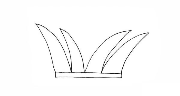 画法步骤芦苇 芦苇简笔画彩色画法步骤教程 植物-第4张