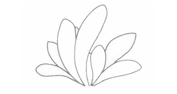 小草简笔画的画法步骤图教程 植物-第4张