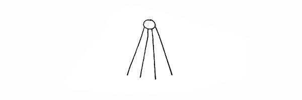 吊兰画法步骤 绿萝吊兰简笔画彩色画法步骤图教程 植物-第3张