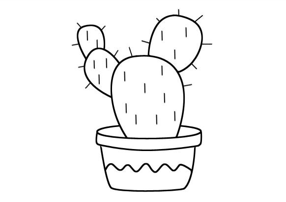 仙人掌简笔画图画 植物-第1张