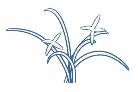 儿童简笔画兰花画法 中级简笔画教程-第3张