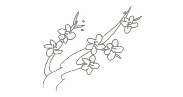 梅花简笔画的画法步骤图教程 中级简笔画教程-第4张
