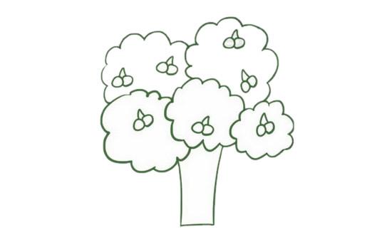 果树简笔画的画法步骤图解教程及图片大全 植物-第5张