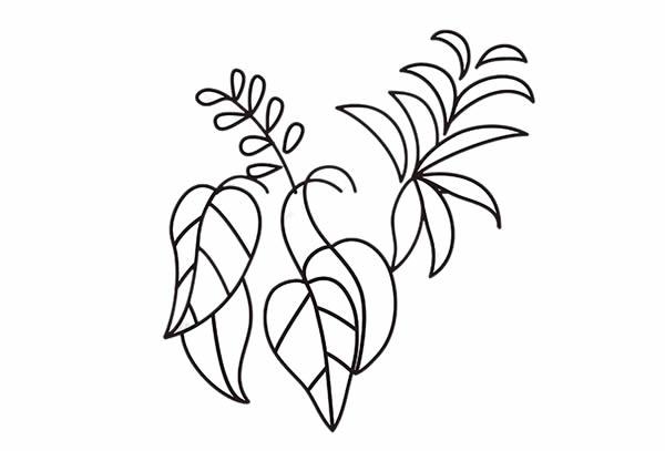 简单好学的吊兰盆栽简笔画 中级简笔画教程-第4张