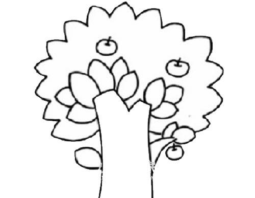 苹果树简笔画儿童画法 中级简笔画教程-第5张