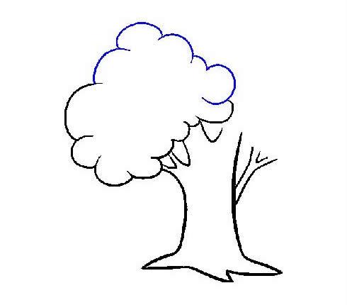 枝繁叶茂的大树简笔画步骤图片大全 植物-第8张
