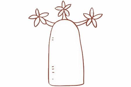 面包树简笔画画法步骤 中级简笔画教程-第4张