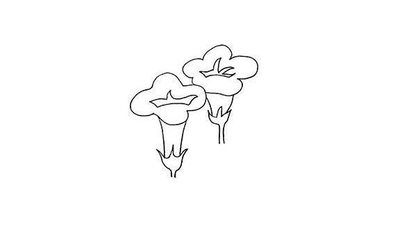 牵牛花画法步骤,牵牛花教程 初级简笔画教程-第5张