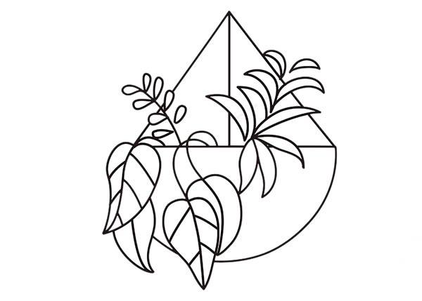 简单好学的吊兰盆栽简笔画 中级简笔画教程-第5张