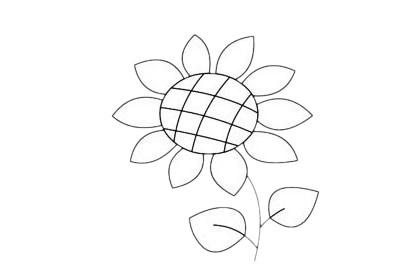 向日葵简笔画简单画法步骤教程及图片大全 植物-第8张