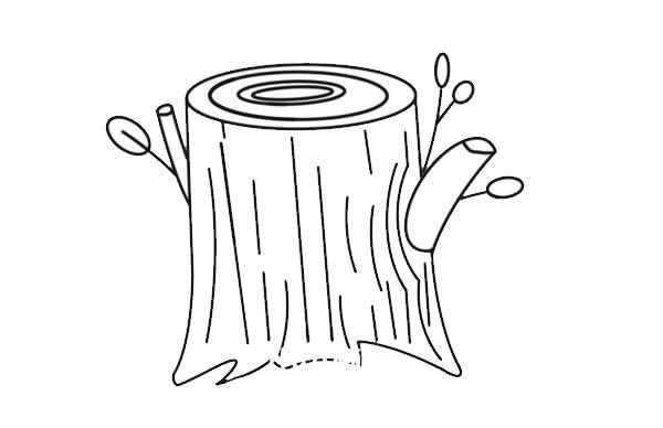 彩色树桩简笔画画法图片 初级简笔画教程-第5张