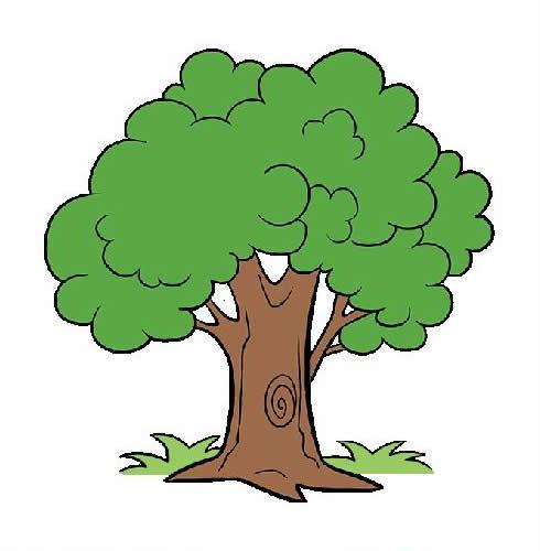 枝繁叶茂的大树简笔画步骤图片大全 植物-第1张