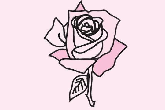 玫瑰花简笔画的画法步骤 中级简笔画教程-第11张