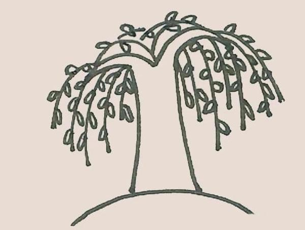 柳树简笔画的画法步骤图解教程 中级简笔画教程-第7张