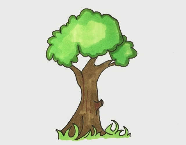 彩色大树简笔画步骤 初级简笔画教程-第1张