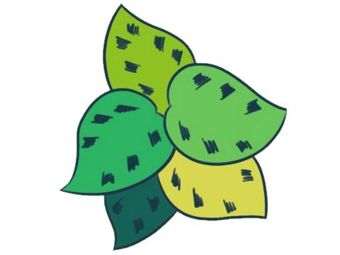 绿色植物儿童简笔画教程 初级简笔画教程-第7张