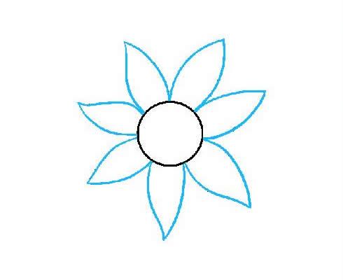 向日葵简笔画步骤图片大全 植物-第4张