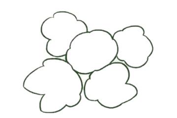 银莲花简笔画的画法,植物简笔画彩色 中级简笔画教程-第3张