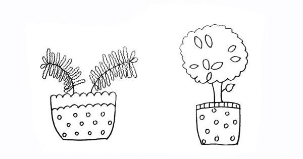 两盆漂亮的盆栽简笔画彩色画法步骤图教程 植物-第10张