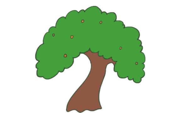 果树简笔画的画法步骤图解教程及图片大全 植物-第8张
