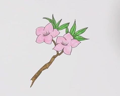 桃花画法步骤,桃花简笔画 中级简笔画教程-第1张