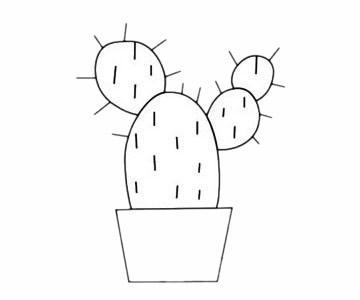 简单的仙人掌简笔画步骤 初级简笔画教程-第5张
