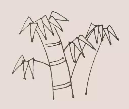 竹子儿童手绘简笔画教程 中级简笔画教程-第6张