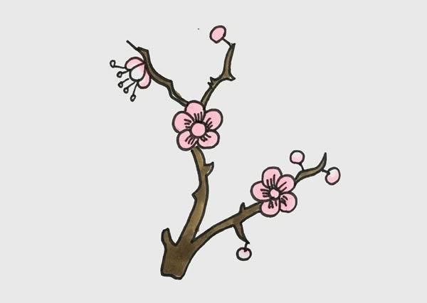 树枝上的梅花简笔画 初级简笔画教程-第1张