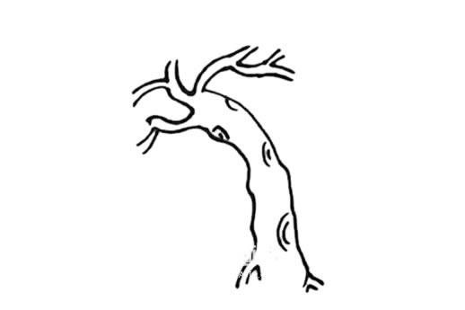 春天的柳树画法步骤 中级简笔画教程-第4张