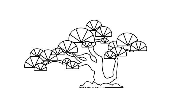 彩色松树儿童简笔画画法 中级简笔画教程-第7张