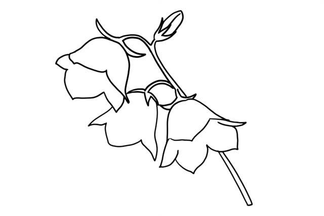 彩色花朵简笔画画法教程 中级简笔画教程-第6张