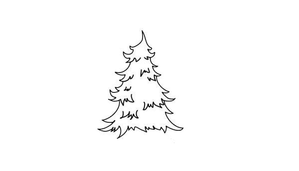 儿童简笔画松树画法步骤图 中级简笔画教程-第4张
