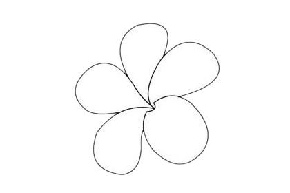 鸡蛋花分步骤简笔画画法 初级简笔画教程-第10张