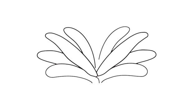 君子兰花彩色画法简笔画 中级简笔画教程-第3张