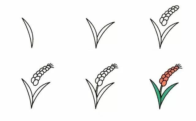 9种植物简笔画超详细教程 初级简笔画教程-第4张