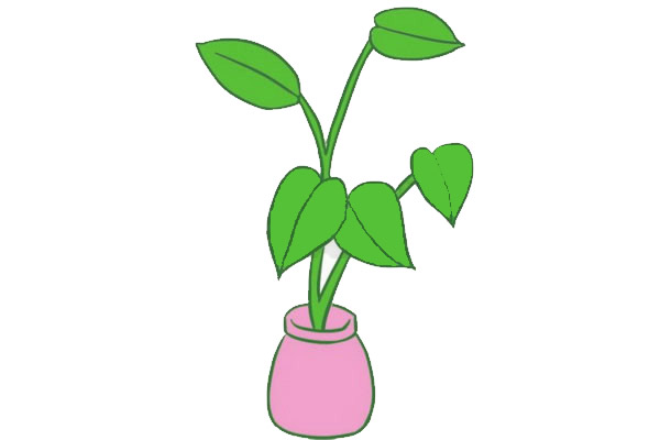 绿萝简笔画画法,绿色植物简笔画 中级简笔画教程-第7张