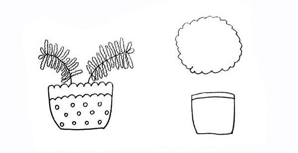 两盆漂亮的盆栽简笔画彩色画法步骤图教程 植物-第8张
