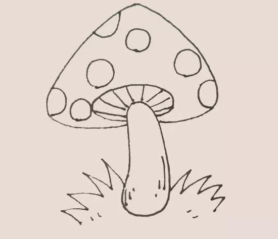 彩色蘑菇简笔画 初级简笔画教程-第6张