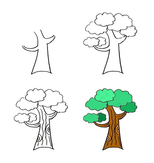 简单四步画出大树简笔画的画法 植物-第1张