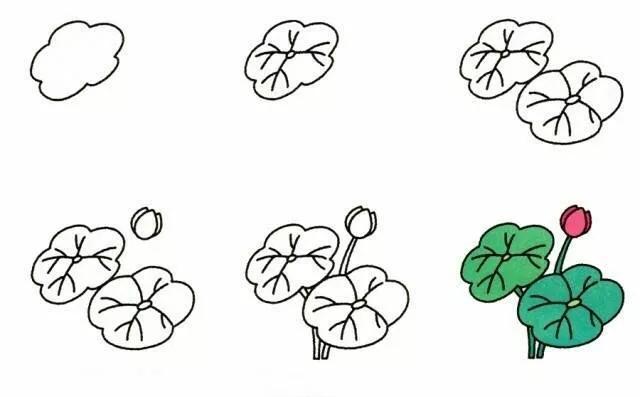 9种植物简笔画超详细教程 初级简笔画教程-第8张