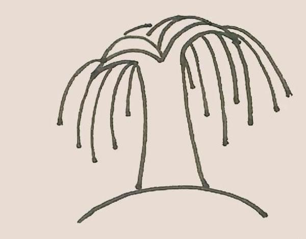 柳树简笔画的画法步骤图解教程 中级简笔画教程-第6张