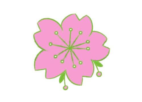 樱花简笔画的画法步骤教程及图片大全 植物-第5张