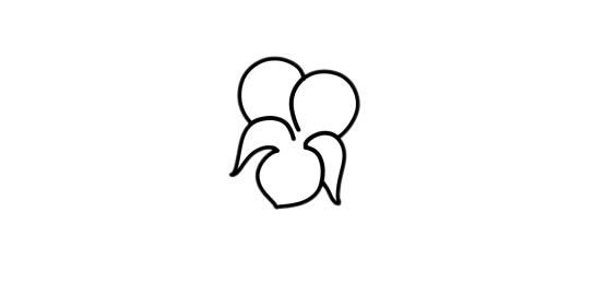 紫罗兰盆栽简笔画彩色画法步骤图片 中级简笔画教程-第2张