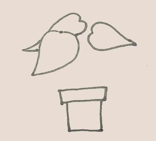 盆栽植物简笔画画法步骤图 初级简笔画教程-第4张