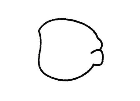 海盗头像简笔画的画法步骤 人物-第2张